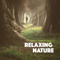 Relaxing Rain Sounds, Deep Sleep Rain Sounds and Soothing Sounds - Relaxing Nature