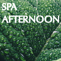 Spa, Sounds Of Nature : Thunderstorm, Rain, White Noise Meditation - Spa Afternoon Collection - Loopable Nature Sounds for Spa Days