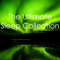 Rain for Deep Sleep, Yoga, The Rain Library - The Ultimate Sleep Collection