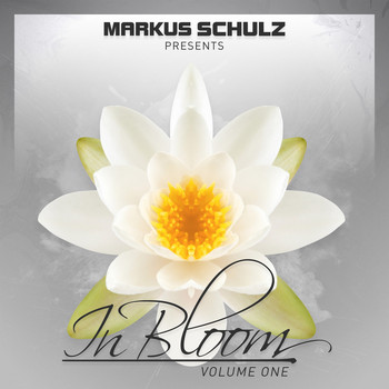 Markus Schulz - Markus Schulz presents In Bloom EP