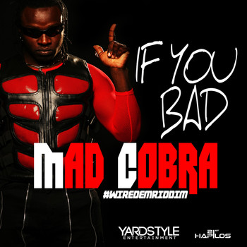 Mad Cobra - If You Bad