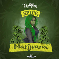 Spice - Marijuana (Explicit)