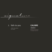 Calibre - Falls to You