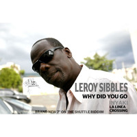 Leroy Sibbles - Why Did You Go