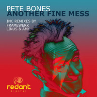 Pete Bones - Another Fine Mess