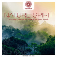 Jens Buchert - entspanntSEIN - Nature Spirit (A Journey Into Magical & Relaxing Rainforest Sounds)
