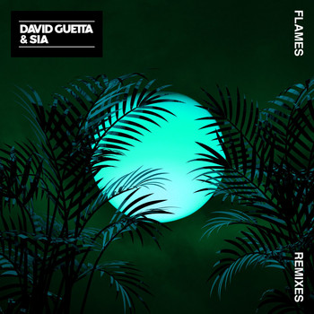 David Guetta & Sia - Flames (Remixes EP)