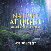Joshua Forest - Nature at Night (Shades of Darkness)