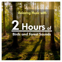 Various Artists - 2 Hours of Relaxing Music with Birds and Forest Sounds