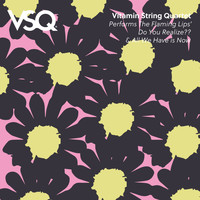 Vitamin String Quartet - Vitamin String Quartet Performs the Flaming Lips' Do You Realize?? and All We Have is Now