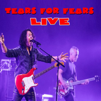 Tears For Fears - Live in Concert