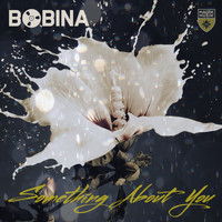 Bobina - Something About You
