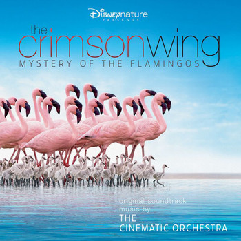 The Cinematic Orchestra - The Crimson Wing: Mystery of the Flamingos (Original Soundtrack)