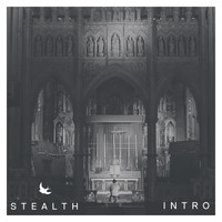 Stealth - Intro