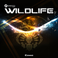 Conno - WildLife