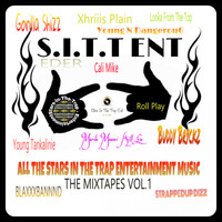 Various Artists - ALL THE STARS IN THE TRAP ENTERTAINMENT MUSIC HEAT