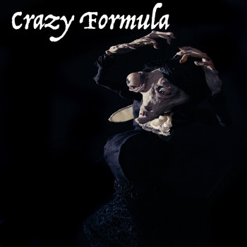 Howard Herrick / - Crazy Formula