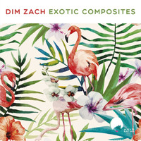 Dim Zach - Exotic Composites