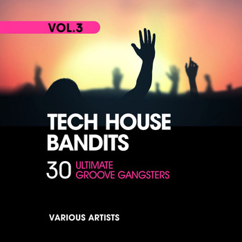 Various Artists - Tech House Bandits, Vol. 3 (30 Ultimate Groove Gangsters)