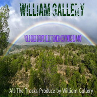 William Gallery - Vol.6 Cues Drops Electronica (Continous Dj Mix) (Vol.6 Cues Drops Electronica (Continous Dj Mix))