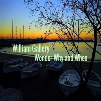 William Gallery - Wonder Why and When