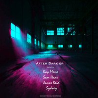 Various Artists - After Dark