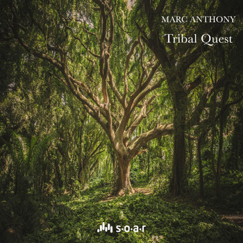 Marc Anthony - Tribal Quest