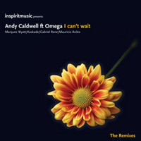 Andy Caldwell - I Can't Wait