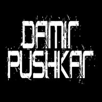 Damir Pushkar - Feel The Pain