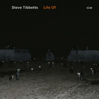 Steve Tibbetts - Life Of