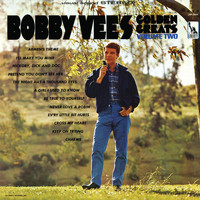 Bobby Vee - Bobby Vee's Golden Greats (Vol. 2)