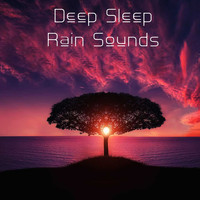 Meditation Relaxation Club, Deep Sleep Music Collective, Rain Recorders - 13 Meditation Relaxation Sounds - Deep Sleep Rain Music