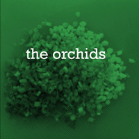 The Orchids - I Never Learn / Echos (Have Hope)