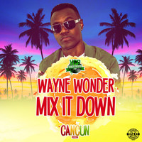 Wayne Wonder - Mix It Down