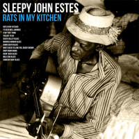 Sleepy John Estes - Rats in My Kitchen