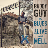Buddy Guy - Nine Below Zero