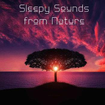 15 Sleepy Sounds from Nature to Help You Fall Asleep