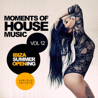 Various Artists - Moments Of House Music, Vol.12