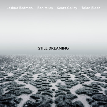 Joshua Redman - Still Dreaming (feat. Ron Miles, Scott Colley & Brian Blade)