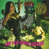 The Apemen - Are You Being Surfed?