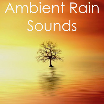 17 Ambient Rain Sounds for Deep Sleep and Natural Yoga Background Music