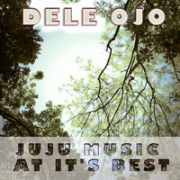 Dele Ojo - Juju Music At Its Best