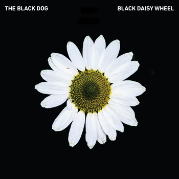 The Black Dog - Black Daisy Wheel