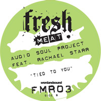 Audio Soul Project - Tied to You