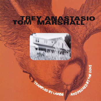Trey Anastasio - Trampled by Lambs and Pecked by the Dove