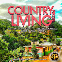 Various Artists - Country Living Riddim