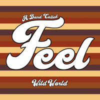 Feel - Wild World