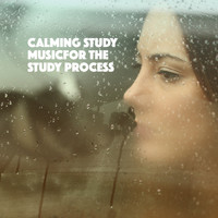 Exam Study Classical Music Orchestra, Musica Para Dormir and Studying Piano Music - Calming Study Music: Music for the Study Process