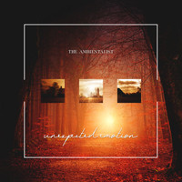 The Ambientalist - Unexpected Emotion