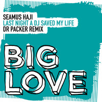 Seamus Haji - Last Night A DJ Saved My Life (Dr Packer Remix)